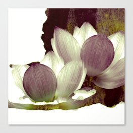 lotus and branch Canvas Print