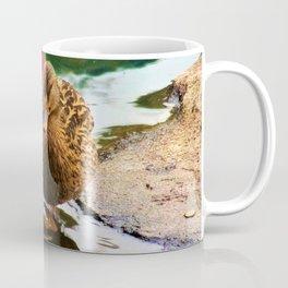 Ain't I Quackin' Cute Coffee Mug