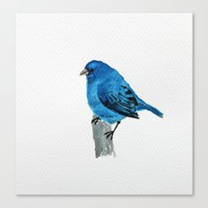 Messenger 005 Canvas Print
