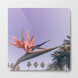 Birds of Paradise Print {2 of 3} | Palm Trees Ocean Summer Beach Magenta Photography Art Metal Print