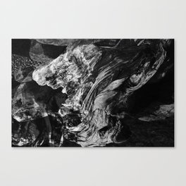 Drift Canvas Print