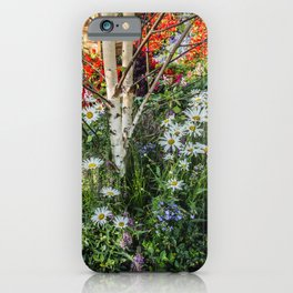 Rural landscape with a birch tree iPhone Case