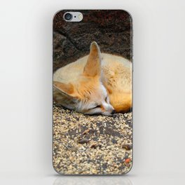 Time to Sleep Little Fennec Fox iPhone Skin