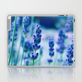 A Touch of blue - Lavender #1 Laptop & iPad Skin