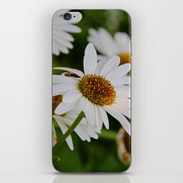 Dances Undisturbed iPhone Skin
