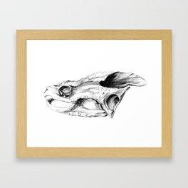 Snapping Turtle Skull Framed Art Print