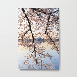 Sunrise in the Trees Metal Print