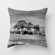 3 Trees Throw Pillow