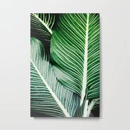 Palm-Tree Breeze Metal Print