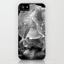 Black And White Flower After The Rain iPhone Case