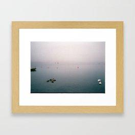 Swan family in misty harbour Framed Art Print