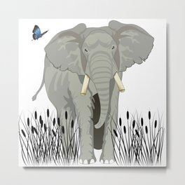 Elephant & Butterfly Metal Print