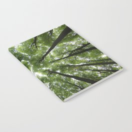 Beechwood Notebook