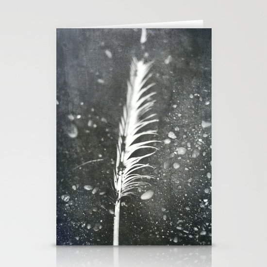 Feather on Black Sand Beach Stationery Cards