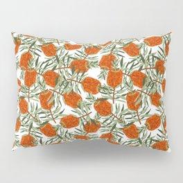 Bottlebrush Flower - White Pillow Sham