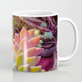 Succulent Rainbow Coffee Mug
