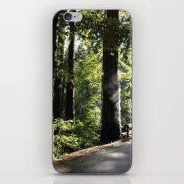 Misting Redwoods iPhone Skin