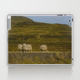 Sheep Ahoy Laptop & iPad Skin