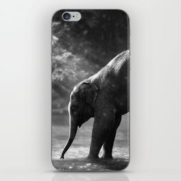 Baby elephant with mother iPhone Skin