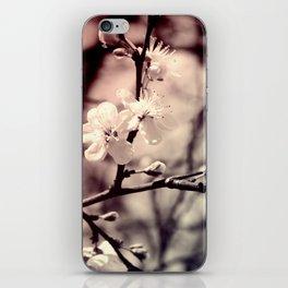 Tree Blossom iPhone Skin