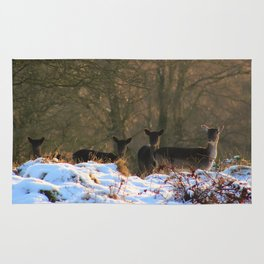 Deer in First Snow of Winter Rug