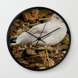 Herring Gull Wall Clock