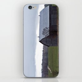 Barn and the Cattle on the hill iPhone Skin