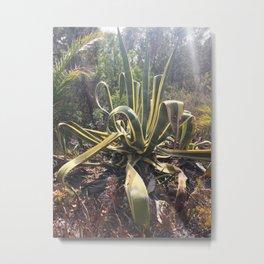 agave 02 Metal Print