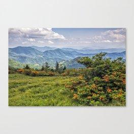 On Roan Mountain 10 Canvas Print