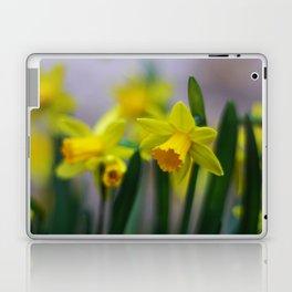 Spring Daffodils Laptop & iPad Skin