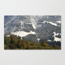 Autumn - Winter 4 Canvas Print