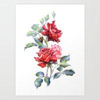 Watercolor illustration. Red rose bouquet. Art Print
