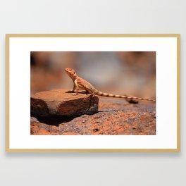 Karijini Lizard Framed Art Print