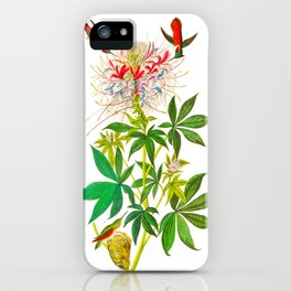 Ruff-Necked Hummingbird iPhone Case