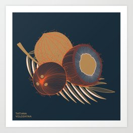 Coconuts and coconut tree branch Art Print