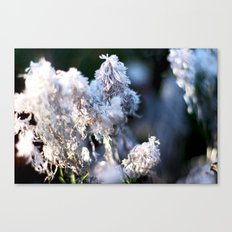 whimsy Land Canvas Print