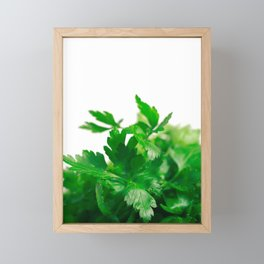 Parsley Framed Mini Art Print