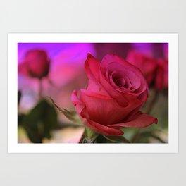 Dreaming of Roses Art Print