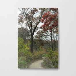 Unexpected Path Metal Print