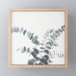Eucalyptus Shadows II Framed Mini Art Print