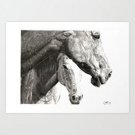 Equines Art Print
