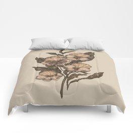 Pansy Comforters