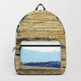 Winter Run Backpack