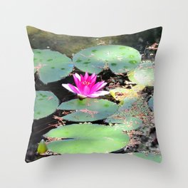Beijing Imperial garden | Jardin Impérial Throw Pillow