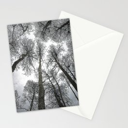 Cypress Tree Canopy 2 Stationery Cards