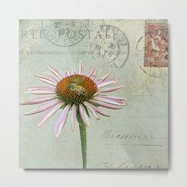 coneflower & bee postale Metal Print