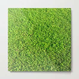 Grass Painting 1 Metal Print