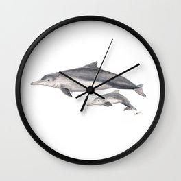 Australian humpback dolphin (Sousa sahulensis) with baby Wall Clock