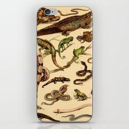 Reptiles Vintage Scientific Illustration Educational Diagrams Popular History of Animals iPhone Skin