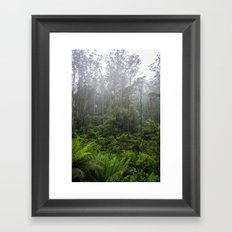 Rainforest. Framed Art Print